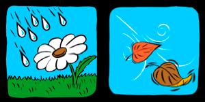 Spring / Autumn icons